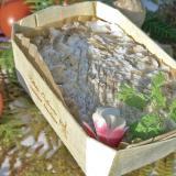 Rillettes di Tours impreziosita dalla vaschetta in legno