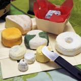 Assortimento di formaggi su pani-set
